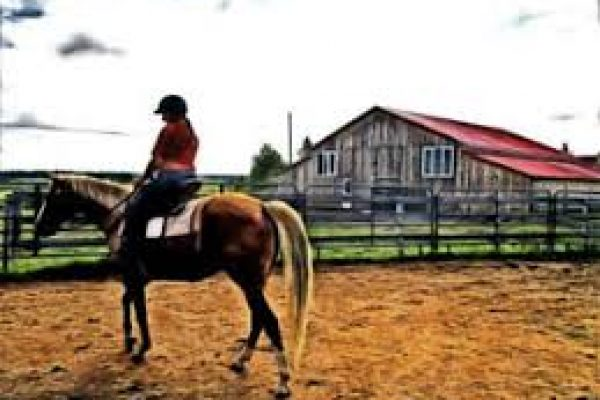 greenfield rider
